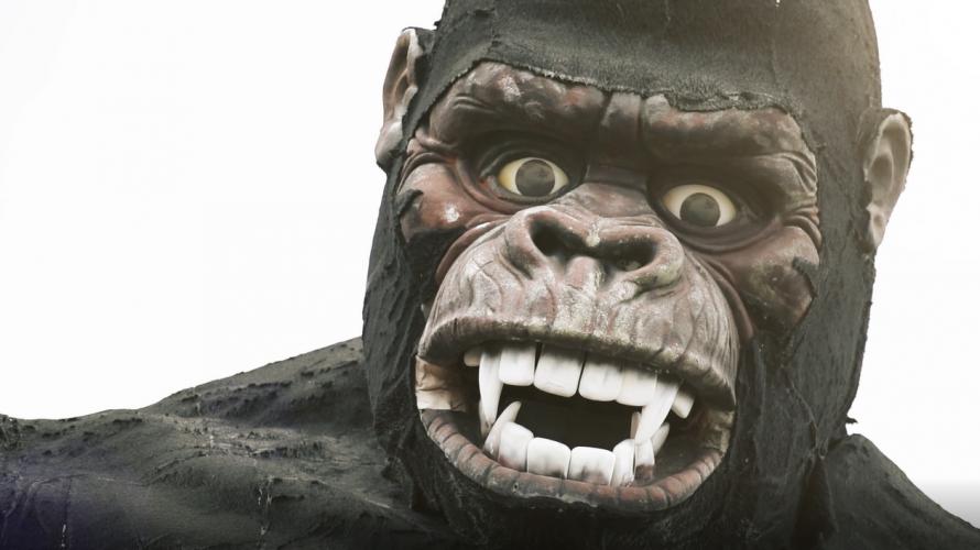 สวนลิง!? 🐵 ไปหาน้องลิงกันที่ NASU WORLD MONKEY PARK