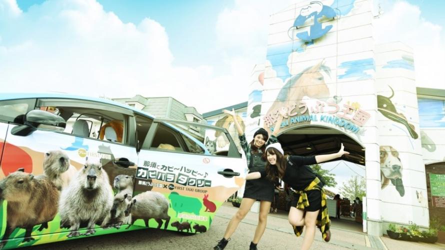 ใกล้ชิดและสัมผัสกับสัตว์นานาชนิดได้ที่สวนสัตว์ Nasu