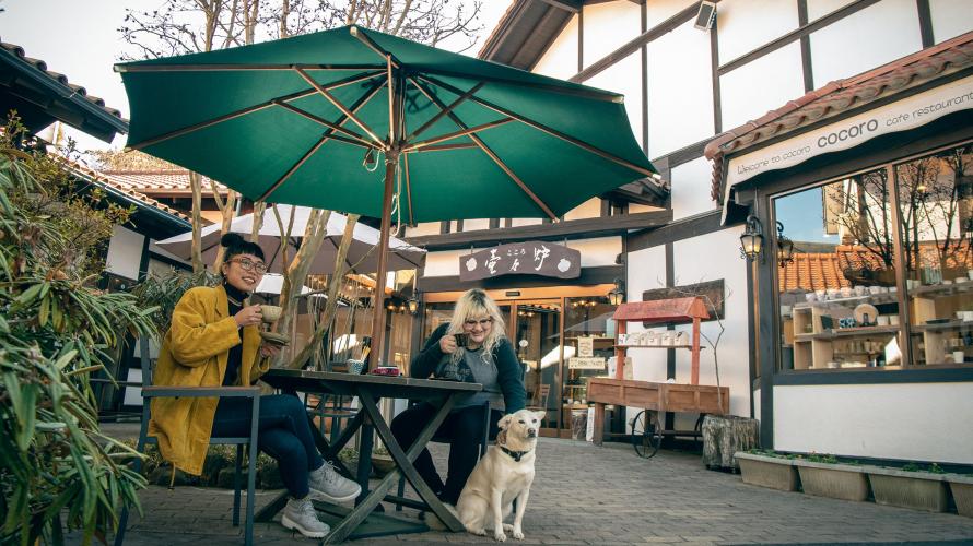 เที่ยวโทจิงิ(Tochigi) | 1 วันกับเมืองแห่งการปั้นหม้อ
