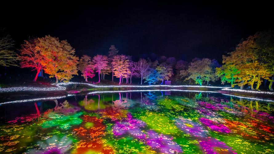 比起新泻更接近长野的APA酒店渡假村上越妙高 全日本最大的彩灯秀就在这里!