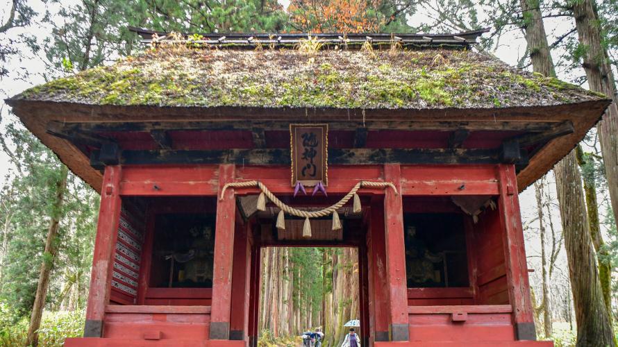 ศาลเจ้าโทกาคุชิ (Togakushi) ศาลเจ้าที่ซ่อนตัวอยู่ท่ามกลางป่าและต้นไม้ใหญ่