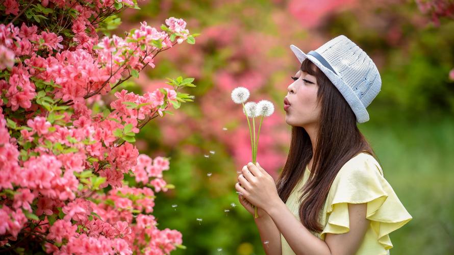 도쿄에서 1시간! 나스 여행가서 꽃길 걷자~ 진달래꽃이 유명한 '야하타 고개(八幡崎)'