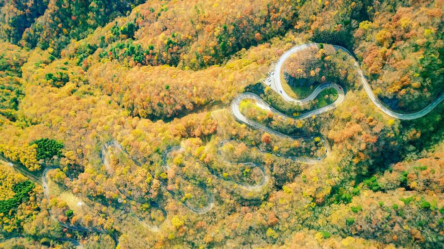 Mùa lá đỏ lộng lẫy tại Nhật Bản