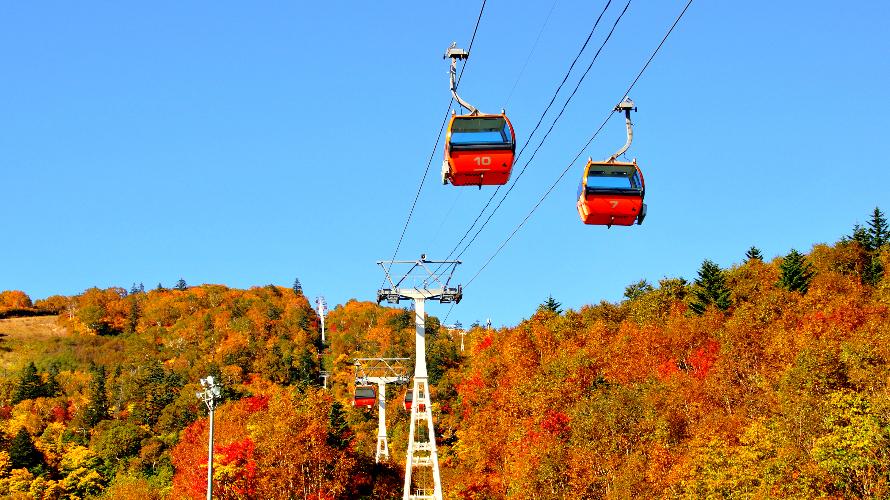 ☙Nhật ký mùa thu 2019 ❧ Hokkaido - Màu vàng xen lẫn màu đỏ của vùng Jozankei