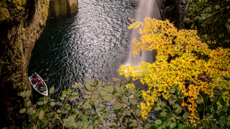 ☙ Fall Foliage 2019 ❧ Kyushu - The Waterfall and The Yellow Maple Leaves at Takachiho...