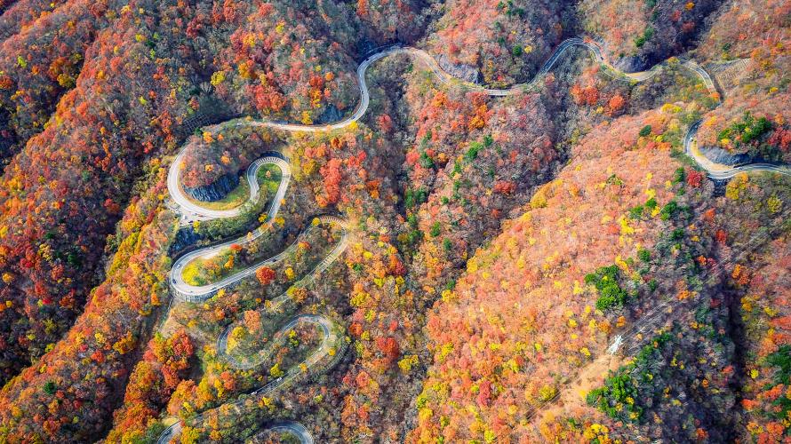 ☙Nhật Ký Mùa Thu 2019 ❧ Kanto - Đường Núi Quanh Co ở Irohazaka