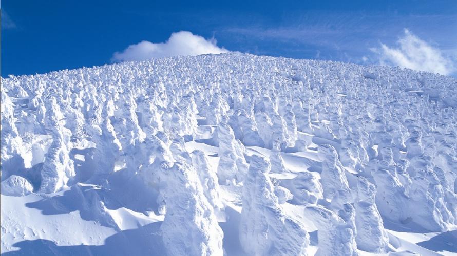 9 cách trải nghiệm mùa đông đặc sắc ở Tohoku (Đông Bắc Nhật Bản)