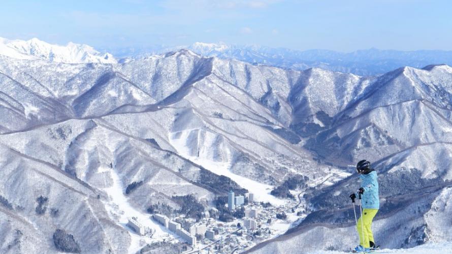 올겨울,  스키 완전 정복 해볼까 !  나가노현 시가 고원 (志賀高原)스키장 전격 해부