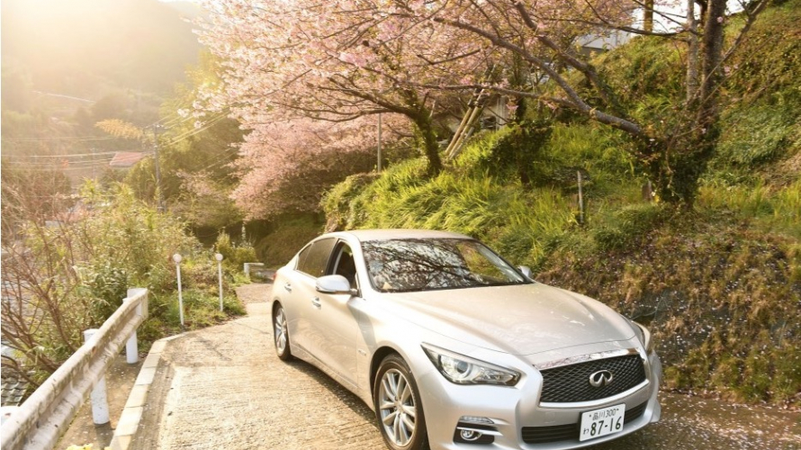 ขับรถเที่ยวไปในชิซูโอกะ กับ Nissan Rent A Car! แนะนำแผนการขับรถเที่ยวในชิซูโอกะ
