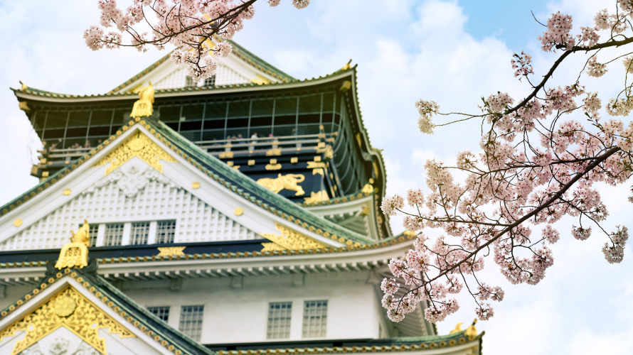 Japanese Cherry Blossoms at Osaka Castle Park