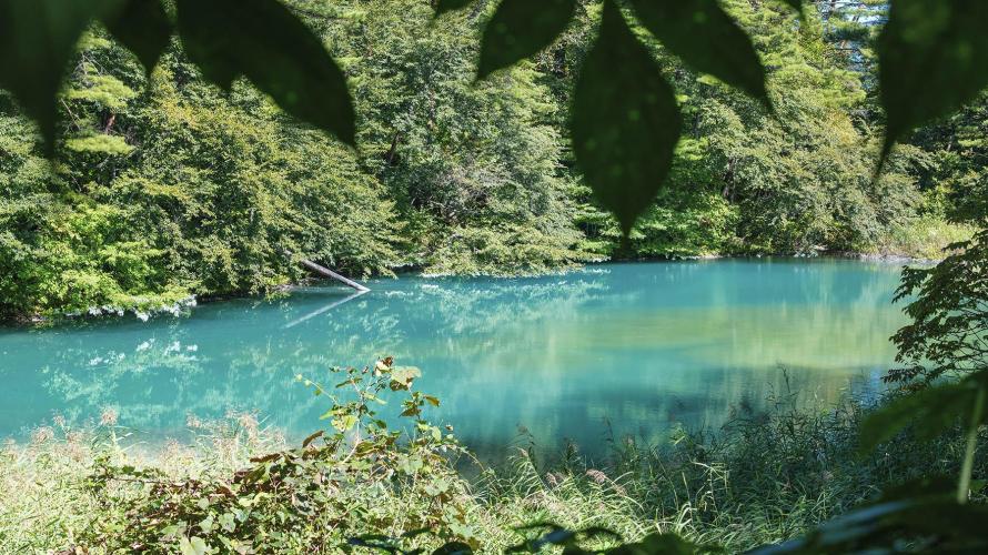 【再見日本】福島:磐梯高原的五色沼之青沼