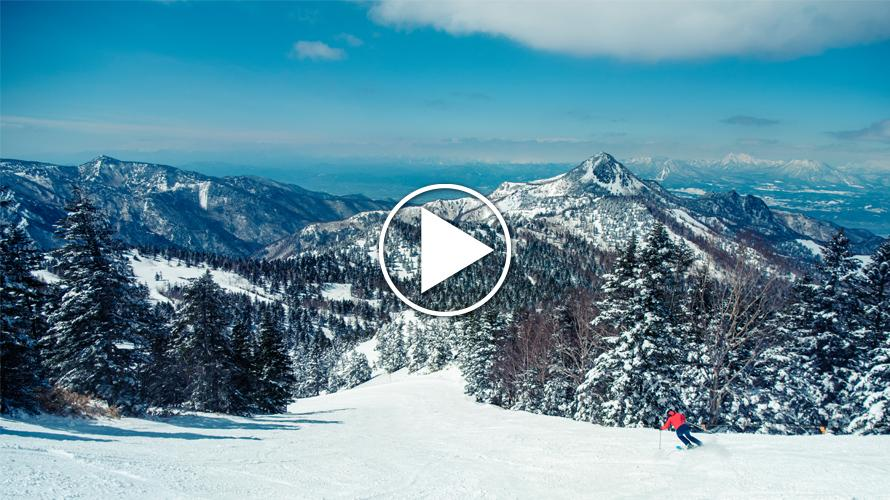 Learn to Ski in Japan, or Just Play in the Snow, at Shiga Kogen