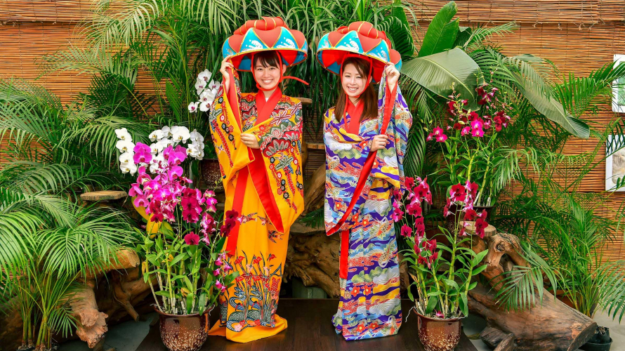 ☙ Nhật ký mùa thu 2019 ❧ Okinawa - Bạn đã từng nghe nói tới mùa lá đỏ ở hòn đảo không có...