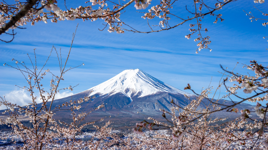 Mt. Fuji: Renowned National Monument or Rubbish Dump for Tourists?