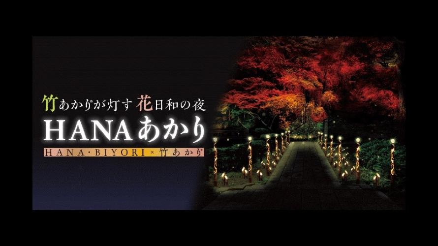 HANA・BIYORI的秋日高潮:紅葉與竹燈籠點燈 花室星巴克浪漫和風夜