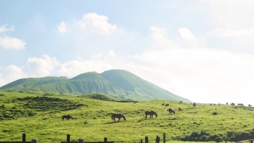 อุทยานแห่งชาติอะโสะ-คุจู - ขับรถเที่ยวรอบภูเขาไฟอะโสะและภูเขาในคิวชู