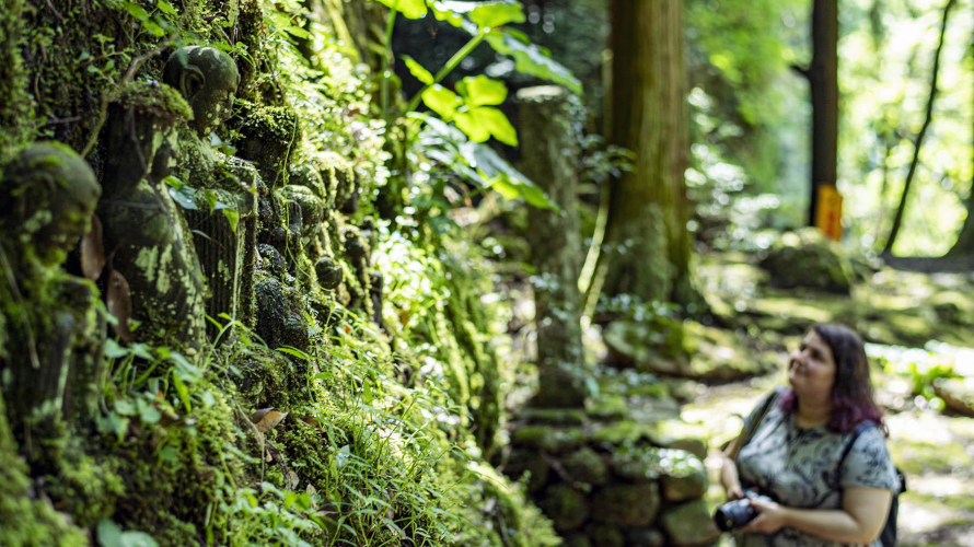 Secrets of San'in | Hike Mossy Green Trails and Discover Spiritual Enclaves in Tachikue...