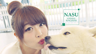 Refreshing!! Recharging!! Nasu Travel Vacation with Animals