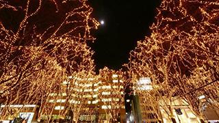 30周年的仙台聖誕節點燈活動