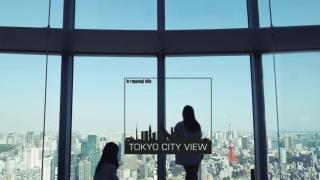 海拔250米东京全景展望
