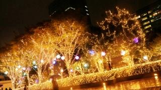 新宿 Southern Terrace 聖誕燈飾速報!!