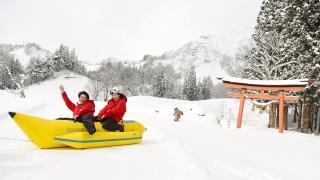 다다미 스키장