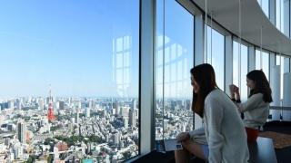 關東的現代傳統與郊區 東京自由小旅行 七日行程完整分享!!
