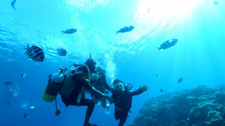 Scuba Diving in the Okinawa Blue Cave with Marine Support TIDE ZANPA!!