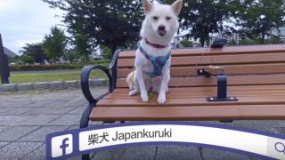 我是KURUKI!