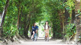叢林?給大家推薦一個滿意神祕氛圍的沖繩推薦觀光景點「福木並木」!