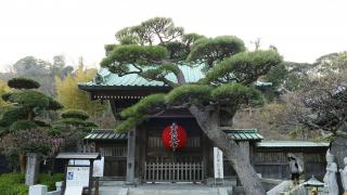 TEMPLE HASEDERA (長谷寺)  | Rencontrez les Divinités des Lieux