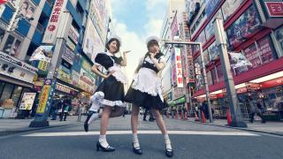 Cơ hội gặp gỡ và chụp ảnh với Cô hầu gái đáng yêu trong quán Cafe ở Akihabara♡