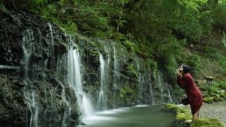 箱根旅游攻略★箱根小涌园里的魅力庭院