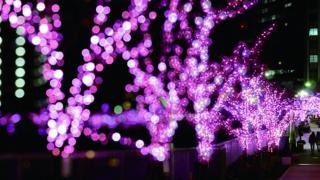 2017 도쿄 일루미네이션 명소 5선