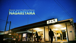 Traveling in Japan✥Sensational City That Meets Another Attraction of Japan Nagareyama