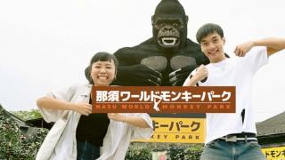 在那須世界猴子公園 享受一下左擁右抱的「猴」滋味