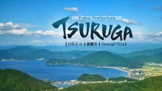 日本北陆第一的福井县敦贺祭!让你真的身历其境