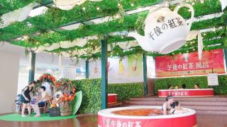 這裡「午後の紅茶」是拿來泡澡的!在箱根小涌園YUNESSUN沒什麼泡不到