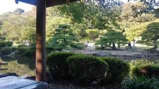 [도쿄 놀거리] 언어의 정원 배경