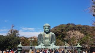 [MIRAI 일본유학 이야기] 가마쿠라&에노시마 당일치기 여행! 아카몽카이 버스소풍