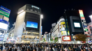 Building on a Rapidly Growing Night Time Economy! Shibuya Premium Nighttime Tour -...