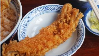 일본 튀김덮밥의 달인, 도쿄 텐동맛집 '도테노이세야(土手の伊勢屋)' 드디어 먹다!