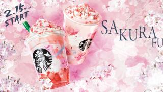 일본 스타벅스 2019년 봄 한정 음료 & 사쿠라 에디션 출시 소식! '벚꽃이 만개한 순간'