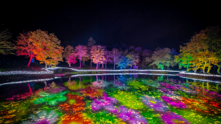 Japanese Hotel in Niigata with the Biggest Light up Show in Japan! APA Hotel Resort...