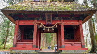 Togakushi Shrine: The Shrine of The Hidden Door, and Beautiful Wooded Paths