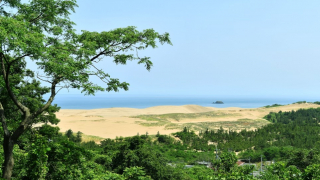 Sand Dunes in Japan!? Head to Tottori to Find the Tiny Desert of Western Japan