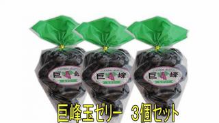 유튜브에서 핫한 쿄호젤리(巨峰ゼリー)! 일본 현지 구매처&가격은?