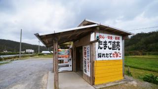 자판기 천국 일본! 소바 자판기와 토스트 자판기 등...레트로 자판기의 매력