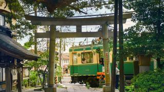 도쿄 근교여행! 여름 데이트코스로 좋은 가마쿠라와 에노시마로 떠나자~