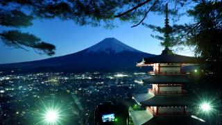 일본여행 누구랑 같이 갈까? 동행 별 일본 여행지 추천!
